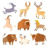 Cattle wild set. Cartoon flat animals. Stock Photography