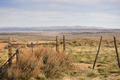 Cattleguard und Zaun Western Scene Stockfotos