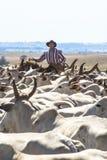 cattleman zdjęcie royalty free