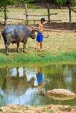 Cattleman bez koszulowego ciągnięcie bizonu obraz royalty free
