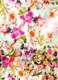 Cattleyaorchidee en bloemornament met de slagen van de waterverfborstel Royalty-vrije Stock Foto's