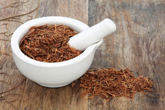 Catuaba Bark Herb. Used in natural alternative herbal medicine in a mortar with pestle over old wood background. Used as an aphrodisiac to increase libido royalty free stock photos