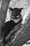 Catwoman Royalty Free Stock Photography