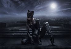 Catwoman Stockfotos