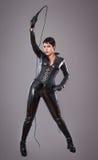 Catwoman Lizenzfreies Stockbild