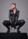 Catwoman Stockbilder