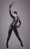 Catwoman Royalty Free Stock Image
