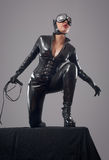 Catwoman Royalty Free Stock Photos