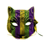 Catwoman Mardi Gras Mask Royalty Free Stock Images