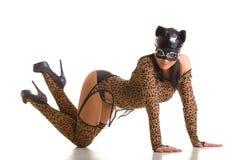 Catwoman posing Stock Image