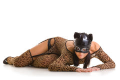 Catwoman posing Royalty Free Stock Images