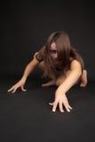Catwoman que olha crafty imagem de stock royalty free