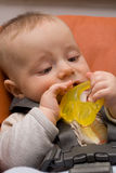 Caucasian baby boy playing. Caucasian baby boy chewing his toy stock photo
