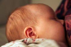 Caucasian baby feeding Stock Images