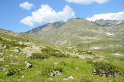 The Caucasian biosphere reserve, valley of river Imeretinka in summer in clear weather. Caucasian biosphere reserve, valley of river Imeretinka in summer in stock image