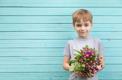 Caucasian boy the teenager against the background of a blue wall from old boards with a bouquet of seedling of c stock image