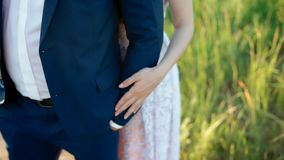 Caucasian bride and groom posing in the field stock footage