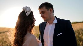 Caucasian bride and groom posing in the field stock video footage