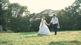 Caucasian bride and groom on the walk in the park. Slowly.  stock footage
