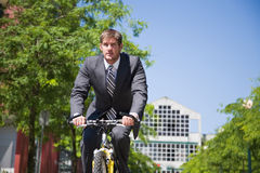 Caucasian businessman riding a bicycle Royalty Free Stock Image