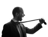 Caucasian businessman silhouette Royalty Free Stock Image