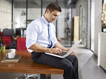 Caucasian businessman working in office Royalty Free Stock Images