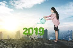 Caucasian businesswoman watering number 2019 stock photography