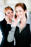 Caucasian Businesswomen. Two attractive caucasian businesswomen using their phones in the office Stock Photo