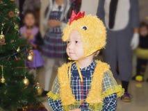 Caucasian child boy at celebration Christmas Stock Image
