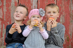 Caucasian children eating apples Royalty Free Stock Photo
