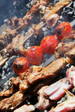 Caucasian cuisine, barbecue,kebab Stock Photography