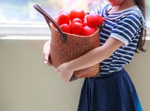 Caucasian cute girl in navy blue striped dress, carrying red hearts basket to cheer up family. Her grin shows happiness, warmth, c stock images