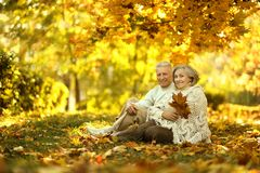Caucasian elderly couple Royalty Free Stock Photos