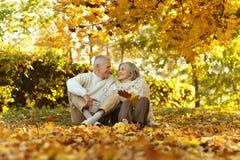 Caucasian elderly couple Royalty Free Stock Photo