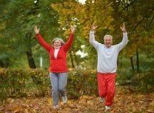 Caucasian elderly couple Royalty Free Stock Photography