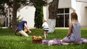 caucasian familj Avla att roa hans lilla son som kastar kottar till luften Hänga ut i parkera Picknickbegrepp arkivfilmer