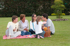 Family Having Picnic In Park Stock Photo