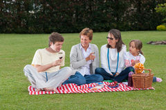 Family Having Picnic In Park Stock Image