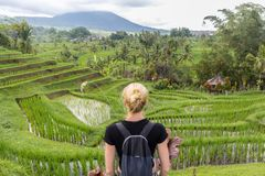 Caucasian female tourist wearing small backpack looking at beautiful green rice fields and terraces of Jatiluwih on Bali stock images