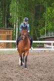 Caucasian flicka och en häst på manege royaltyfria bilder