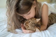 Child playing with cat on bed Stock Photos