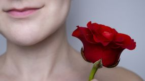 Caucasian girl with red rose stock photography