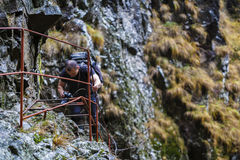 Caucasian hiker climbing on a safety chains through a very diffi Royalty Free Stock Photography