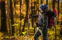 Caucasian Hiker in the Forest stock photography