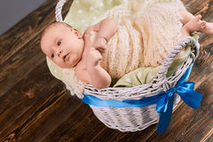 Caucasian infant in a basket. Royalty Free Stock Photo
