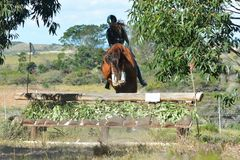Eventing equestrian jumping down skiramp royalty free stock image