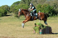 Horse and rider jumping. Caucasian junior Equestrian girl and her chestnut horse jumping on their cross-country track as part of their eventing Royalty Free Stock Images