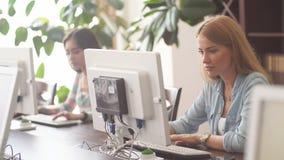 Caucasian kvinna som använder persondatorn för att bläddra det netto i regeringsställning arkivet lager videofilmer