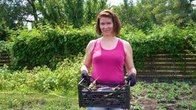 Caucasian kvinnlig bonde som bär den plast- asken med skördade aubergine arkivfilmer
