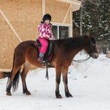 Caucasian liten flicka med den bruna hästen royaltyfri bild